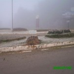 Fotos 2007 2008 823